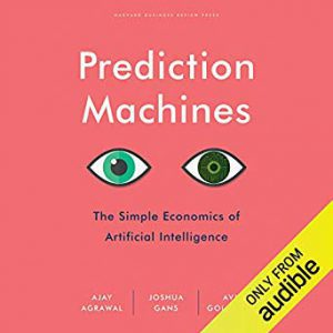 Economically speaking, AI makes prediction a commodity – and nothing more